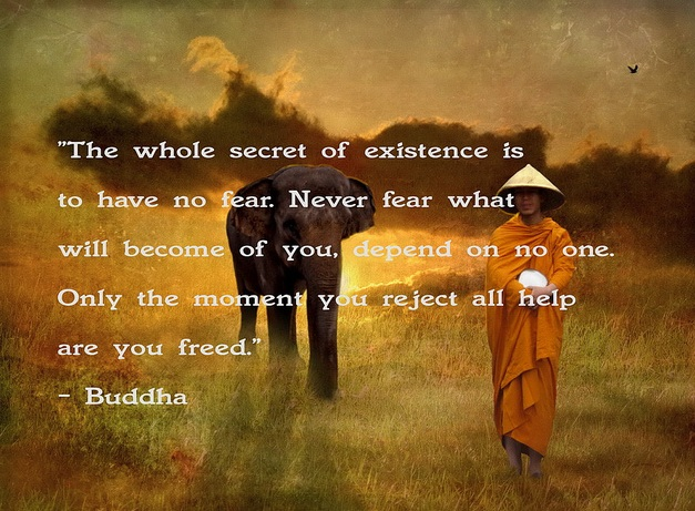 Buddha Quotes On Happiness New Buddha Quotes