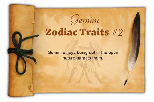 Gemini Facts - Image 2