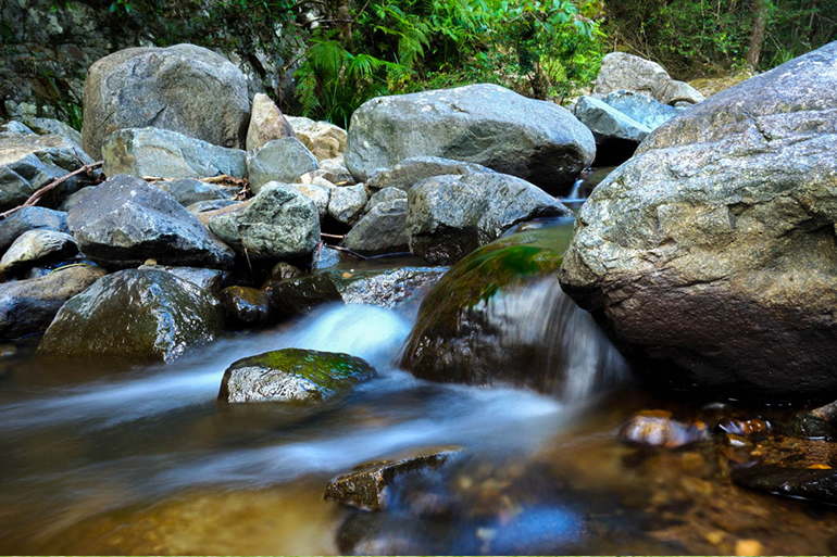 stoney-creek-bellthorpe